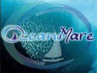 Oceano Mare Escursione in Barca