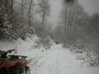 nella neve!