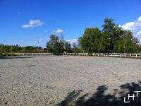 campo per cavallo