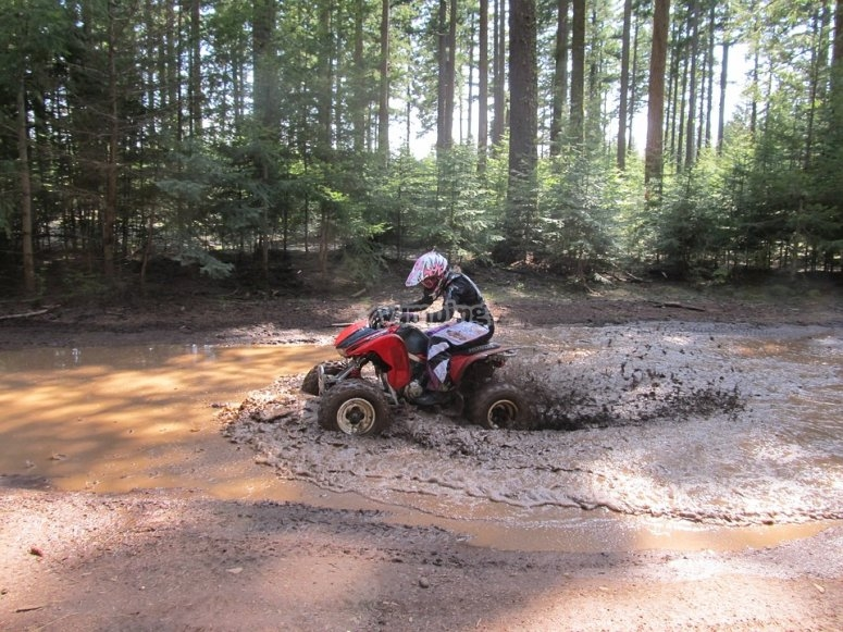 Quad riding in mezzo alla natura
