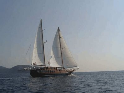 Bertex Marine Noleggio Barche