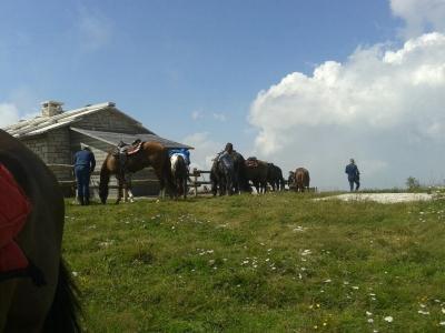 Escursione a cavallo da mezza giornata a Verona