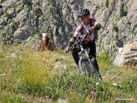 In Mountain Bike con spettatori