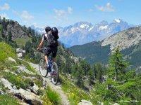Sui sentieri in Mountain Bike