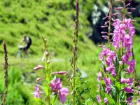 I colori della natura e Mountain Bike