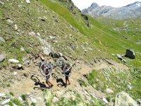 A piedi con la Mountain Bike
