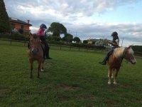 Gita a cavallo con messa in sella a Venezia 3 ore
