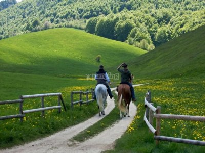 Horseback riding tour in Venice for experts 1 day
