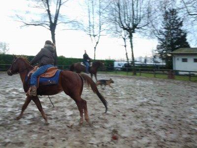 Horseback riding in Venice + glass of wine