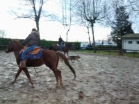 On horseback in nature