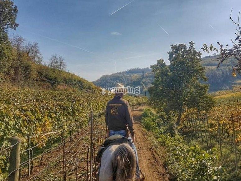 Una passeggiata in campagna