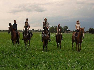 Passeggiata a cavallo con spuntino Baselga di Piné