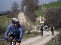 in mountain bike tutti insieme