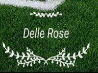 Centro Sportivo delle Rose