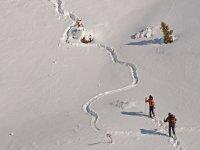 Con le ciaspole vivi l'avventura piú bella sulla neve fresca