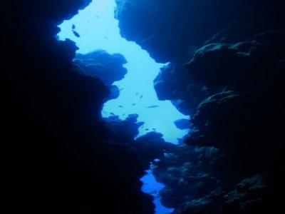 Circolo subacqueo Padi reggio Emilia