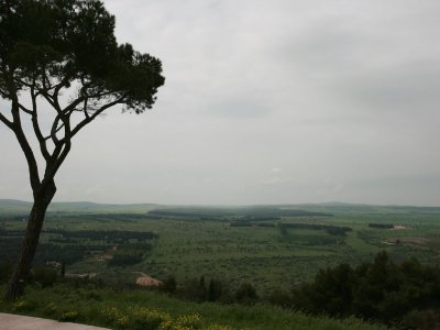 Guided tour of Castel del Monte Puglia two hours
