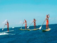 Ocean Tribe S.U.P.