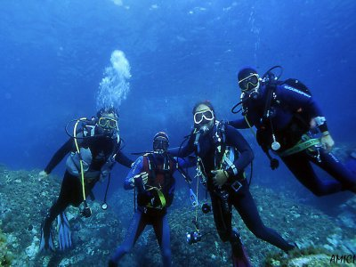 Diving Le Sirene