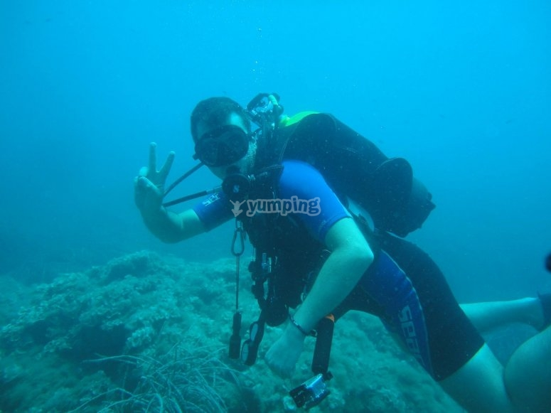 Dive with us !!