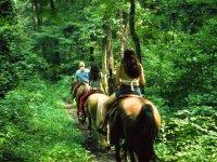 Passeggiata a cavallo