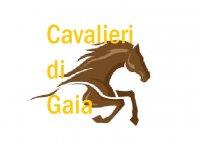Cavalieri di Gaia Orienteering