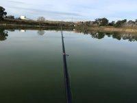 Pesca al lago