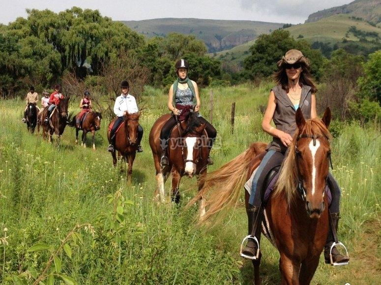 On horseback in the fields!