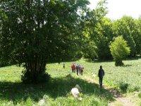 trekking e orienteering