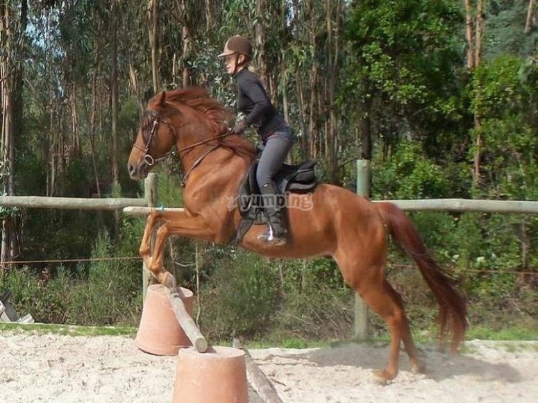 Jumping in the saddle