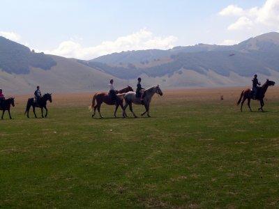 Forestalp Passeggiate a Cavallo