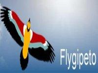 Flygipeto