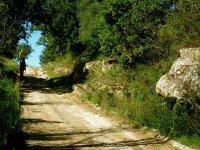 Sentiero nei pressi di Pitignano