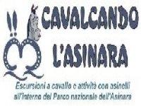 Assial - Cavalcando L'Asinara