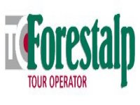 Forestalp Orienteering
