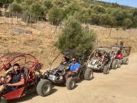 excursion in buggy
