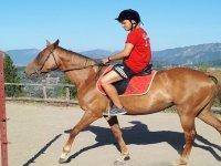 equitazione1