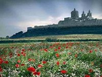 Tours in Sicily