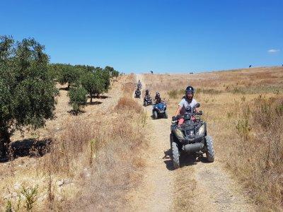 Escursione in quad a Ribera di 4 ore