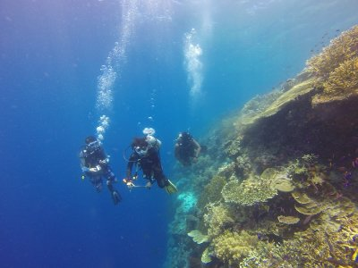 Open Water Diver diving course in Salerno
