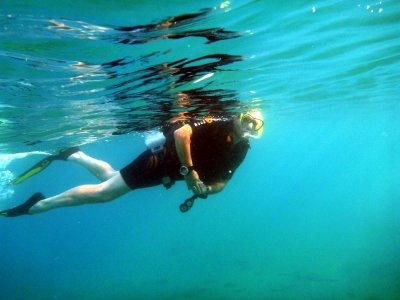 Snorkeling on the island of Giannutri with lunch 7 hours