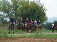 All on horseback