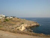 A stretch of coast
