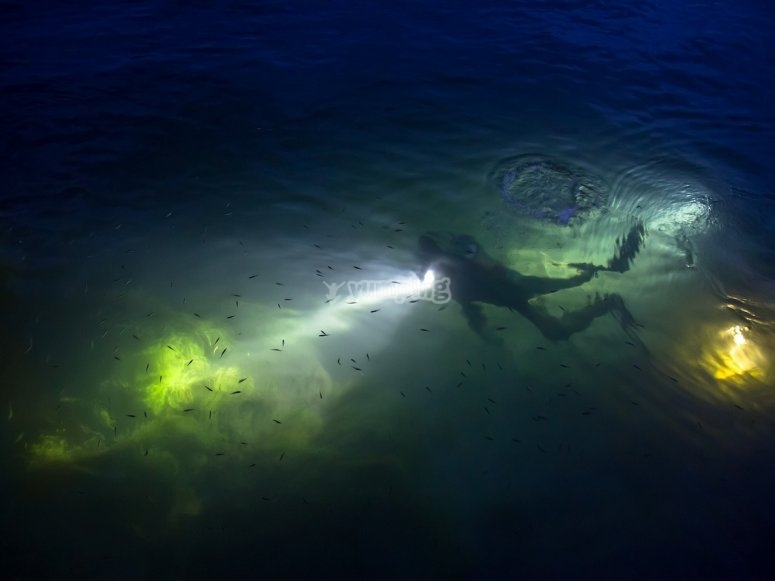 diving in the seabed at night