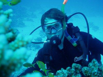Immersione subacquea alle Isole Tremiti