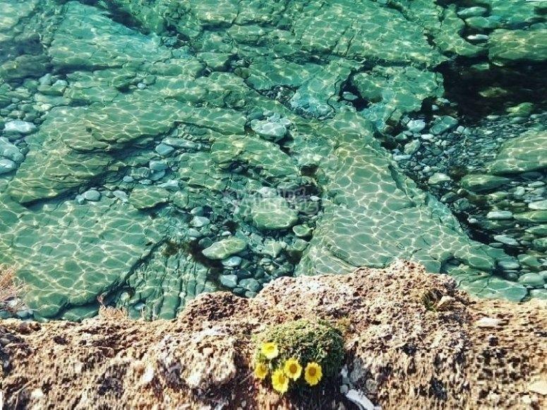 il mare cristallino della riserva