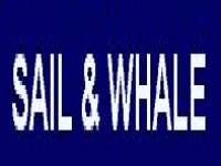 Sail And Whale