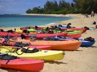 Ampia scelta di canoe