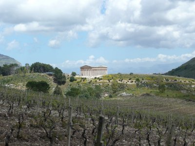 2-hour buggy tour of the Segesta countryside