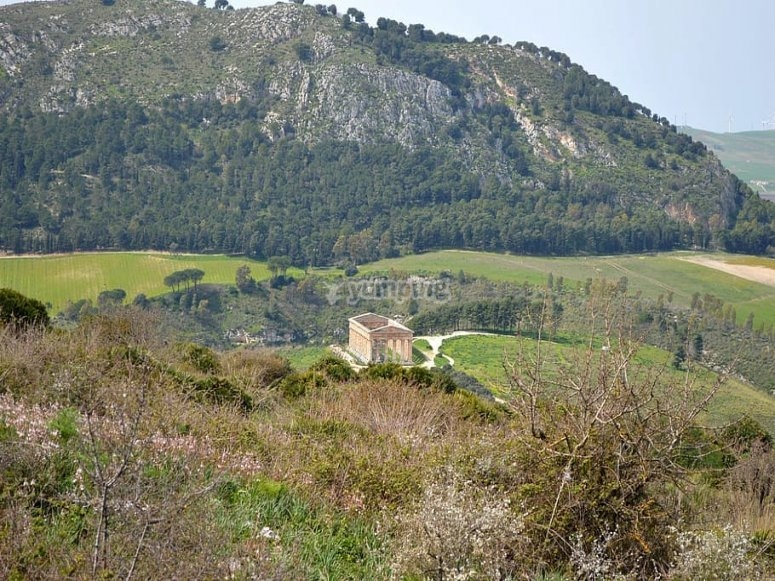Overview of Segesta